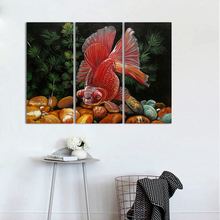 3Pcs/Set Modern Fashion Animal Fish Decoration Red Pet Goldfish Wall Art Picture Poster Canvas Painting For Living Room Arts