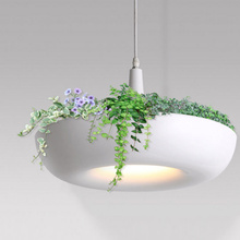 Modern plant chandelier and simple IKEA potted save energy lamp & coffee plants creative lighting