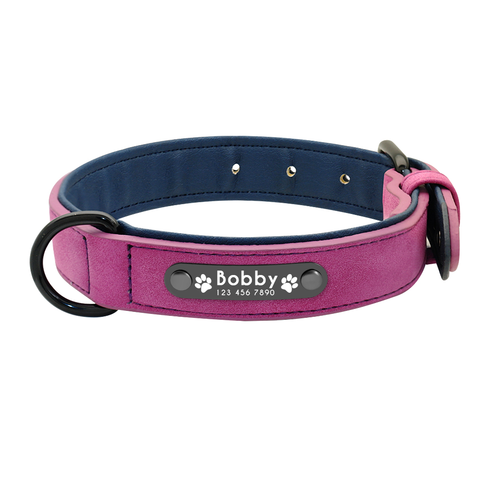 Dog Collar with Name Product Image 13