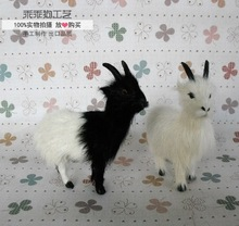 simulation cute goat 13x4x12cm model polyethylene&furs sheep model home decoration props ,model gift d735(China)