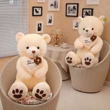 large teddy bear plush toy hugged best wishes pillow bear doll birthday gift b4962(China)