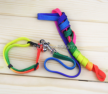 Pet Rainbow dog Cat Collar leash With Bell Nylon dog leads Colorful traction rope & harness