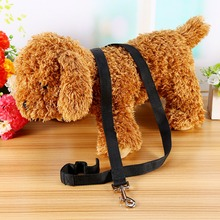 High Quality Pet Small Dog Puppy Cat Rabbit Nylon Harness Training Collar Leash Lead new(China)