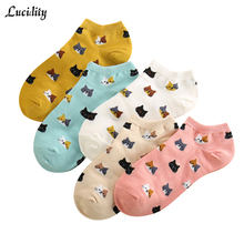Lucidity Summer Cartoon Socks Woman Fashion Women's Socks Classic Brand All-Match Sock Cotton Woman 5pair/lot(China)
