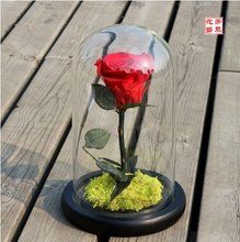 DIY Decoration for Valentine's Day, Christmas, Wedding Gifts Preserve Fresh Flower Life Preserver Preserved Flowers Roses
