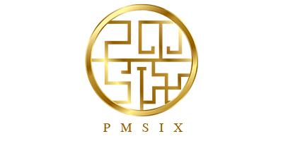 Pmsix