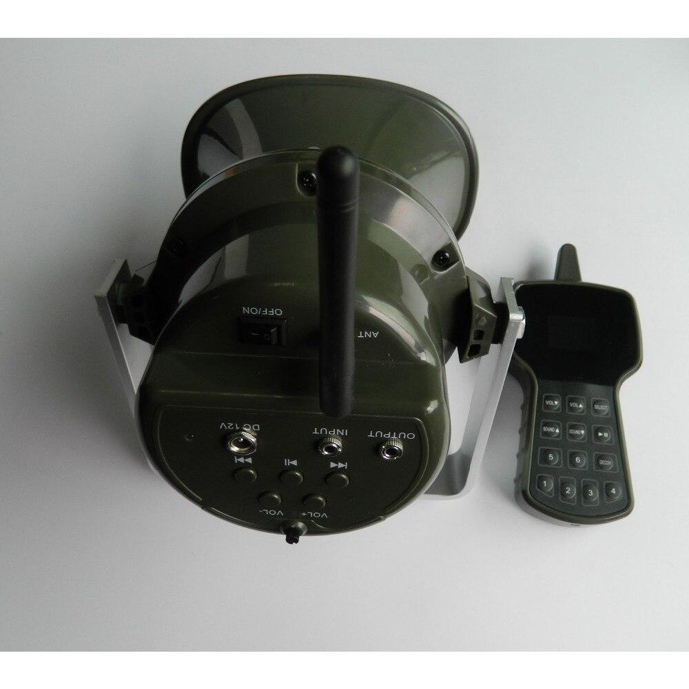 DSCN5417