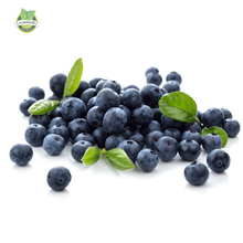 Big promtion .200 Top Hat Blueberry bush Seeds ,Great DIY Home Container Bonsai rich in Anthocyanin(China)