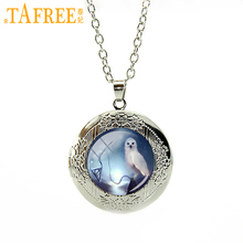 TAFREE Fashion Vintage White Owl Case harry Deathly Hallows Necklace steampunk bird locket pendant jewelry Halloween gifts N558(China)