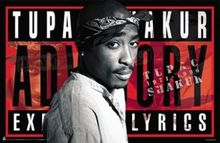 NEW TUPAC ADVISORY POSTER - RARE 2PAC poster home decoration Canvas Print 50x75cm Free Shipping(China)