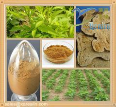 1kg  10:1 Atractylodes extract<br><br>Aliexpress