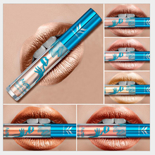 Recommend make your own lip gloss factory outlets nourishing lip gloss waterproof lip gloss(China)
