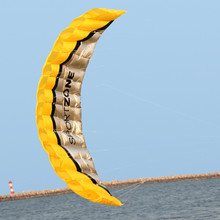 NEW High Quality  2.5m Yellow Dual Line Parafoil Kite  WithFlying Tools Power Braid Sailing Kitesurf Rainbow Sports Beach