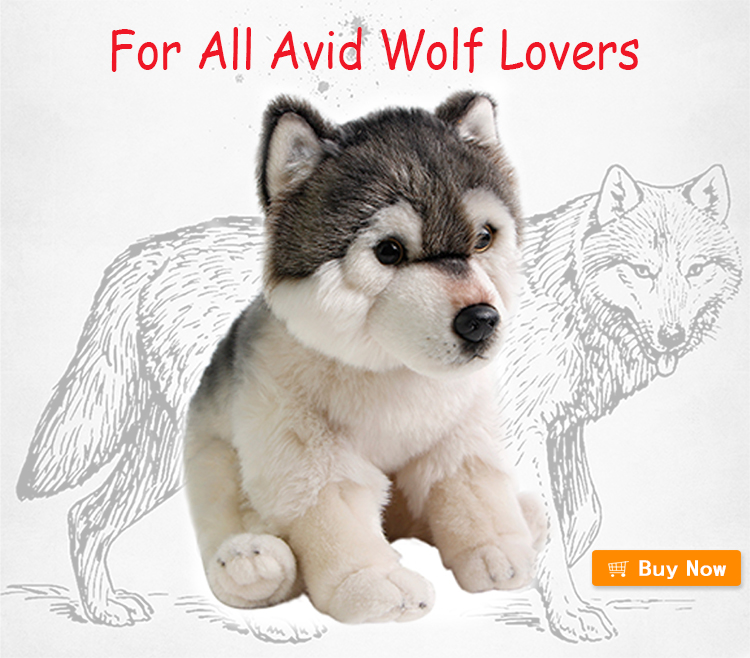 wolf-750 buy now