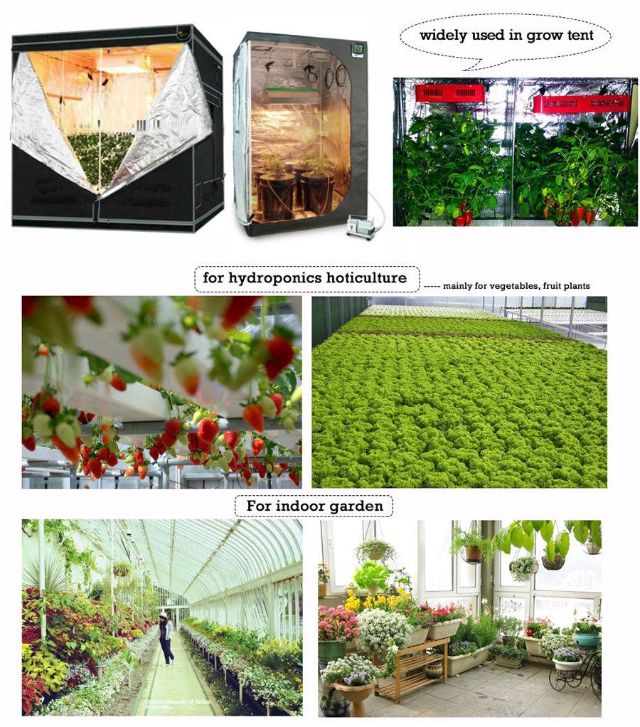 Greenhouse Led Grow Light 2000w Full Spectrum Plant Lamp For Loop Lebaran Bundle Steam Wallet Idr 12000 10pcs Hydroponics Veg Flower Fruit Indoor Tent Lamps Bj Us444