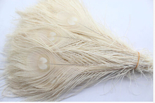 Manufacturers selling 50 PCS bleaching peacock feathers 10-12 inches/ 25-30 cm(China)