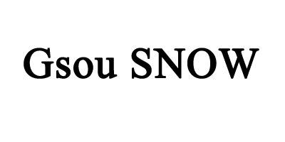 Gsou Snow