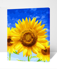 Painting by Number DIY Oil Paint 40X50CM Canvas Art Sunflower blue sky Oil Painting Home Decor Flowers