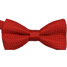 Chic Baby Boys Infant Toddler Pre Tied Party Wedding Tuxedo Bow Tie Necktie Hot(China)