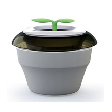 New Peace Grass Car Air Purifier In Addition To Taste In Addition To Formaldehyde Brown, dark green, violet(China)