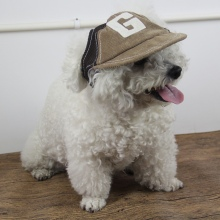 Pet Dog Cap Leisure Travel Sunshade Sunscreen Cap Outdoor Sports Breathable Baseball Dog Corduroy Hat New Adjustable