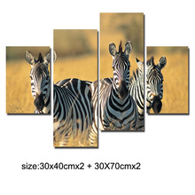 Free Shipping 4 Panel Three zebra art Painting On Canvas Wall Art Cuadros Picture Home Decor For Living Room No Frame(China)