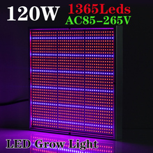 New Arrival 120W 1131Red:234Blue High Power LED Grow Light for Flowering Plant and Hydroponics System 85-265V Free Shipping