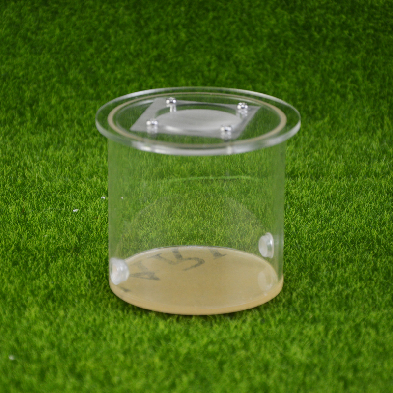 round ant farm food feeder,food feeding area for ant nest ,ant farm acryl or insect nests villa pet mania for house ants