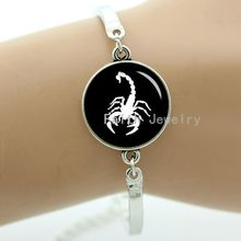 Scorpion bracelet vintage animal insect silhouette art charms New Zealand kiwi bird redback spider Mantis Honeycomb jewelry T400(China)