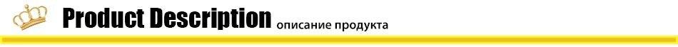 P201801301310