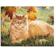 DIY Full Square Diamond Painting Cross Stitch Kits Animals Red Cat Diamond Mosaic Painting Diamonds Embroidery Home Decoration