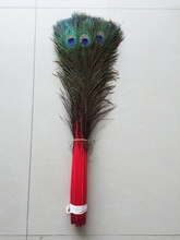 Wholesale 50pcs beautiful  red peacock feather eye 70-80 cm / 28-32 inch decorative celebration