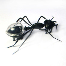 1 Pcs Mini Kids Toys Magic Solar Powered Ant Insect Play & Learn Educational Novelty Toys for Children(China)