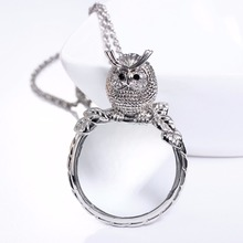 2017 New Concept Cute Owl design Magnifying Glass Pendant Reading Parent gift Gold-color White stones Crystal Necklace for women(Hong Kong)