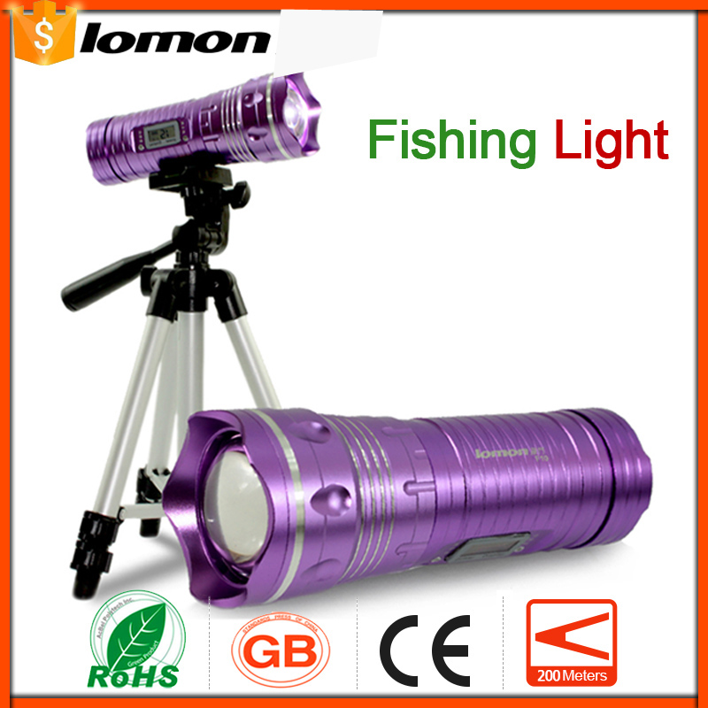Zoom Handy Rechargeable LED Fishing Flashlight Torch Lamp Professional 2 Color Blue Purple Fishing Light Insert rod bracket Set<br>