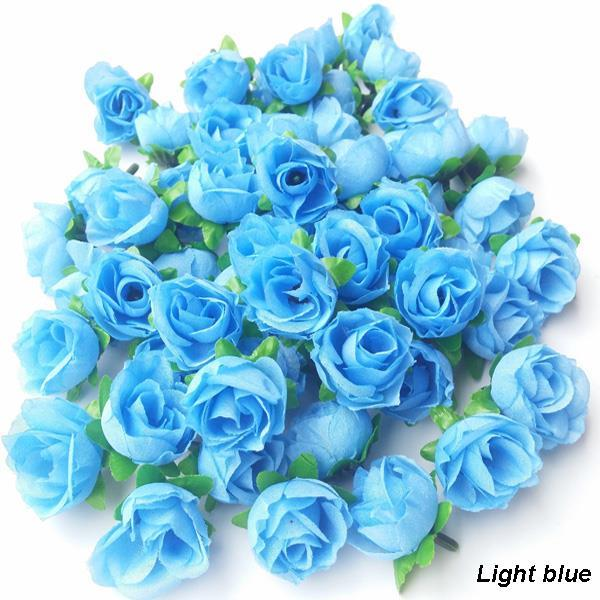Blue Girl Rose Bush Flower Seeds  amazoncom