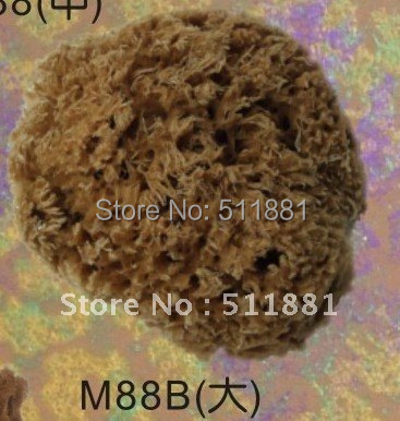 5 Large NATURAL sea grass sponge for wall painting FREE shipping | 125mm art grass sea sponge<br><br>Aliexpress