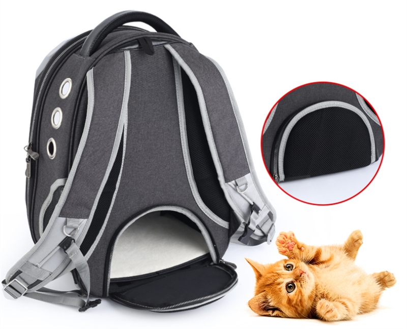 dog backpack carrier (5)