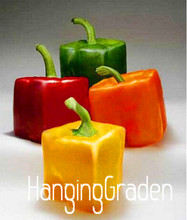 Rarest Mixed Orange Green Red Yellow Square Sweet Pepper Seeds, 200 Seeds a log, Edible Tasty Vegetables,#EQLSSL