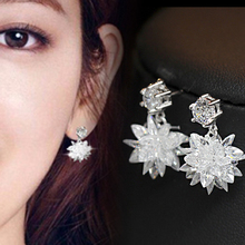 Sparkling Cubic Zirconia Earrings 925 Sterling Silver Party Earrings for Women New Arrival Trendy Style DE541