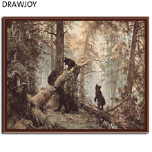 DRAWJOY Frameless Picture Painting By Numbers Wall Art Acrylic DIY Oil Canvas Painting Home Decoration For Living Room 40*50CM(China)