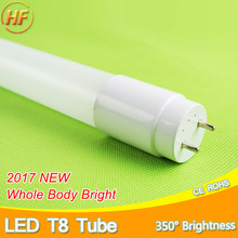 High Bright LED Tube T8 10w 60cm 2Feet 220v LED Fluorescent Light Tube LED Lamp milky cover Warm Cold White SMD2835 Bulb neon(China)