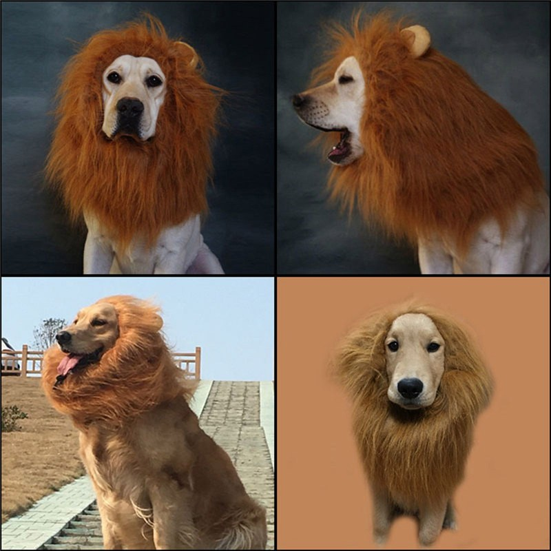 Furry Lion Costume for Cats & Dogs