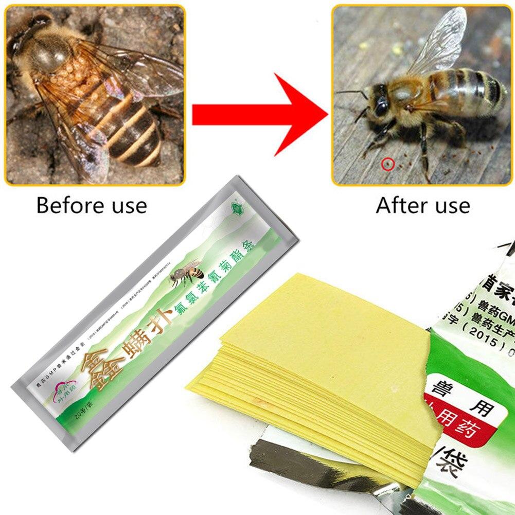 HERCHR 40 Piezas de Medicina de Abejas Tiras de Medicina de Apicultura para Tira de fluvalinato de ManHao Asesino de varroa de /ácaros de Abeja