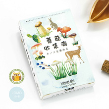 28 PCS/BOX Fashion LOMO Card Mushroom Collection Cartoon Bookmark, Gift Card, Greeting Card, DIY Gift Cards