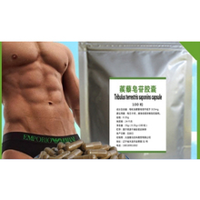 directly sell 100% full natural  total 100 caps/bags 90% saponins Tribulus Terrestris Extract caspules for body health @