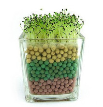 50 seeds/pack Heart grass seed desktop mini bonsai Hear-shaped Grass