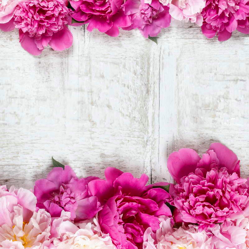 White Wall Backdrops Floral Wedding Photography Backdrops Custom Photo Studio Backdrop Valentines Day Photo Props<br><br>Aliexpress