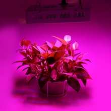 High Power Full Spectrum LED Grow Lights 300W(True 100W) reflector For Hydroponic Grow Box Medical Plant Commercial Cultivation