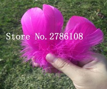 Wholesale 200pcs Fuschia 7-10cm Natural  Goose Feathers For Wedding Hat Hair Accessories Craft Making